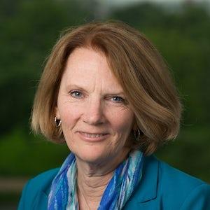Janet Buckley, Vice President at Van Scoyoc Associates